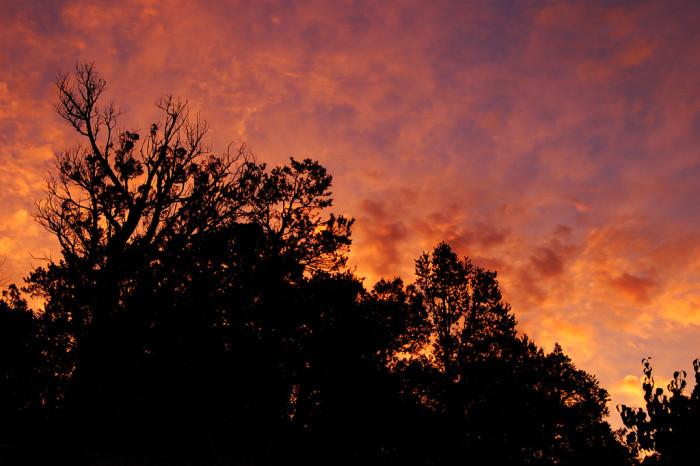 3. Albuquerque sunrise