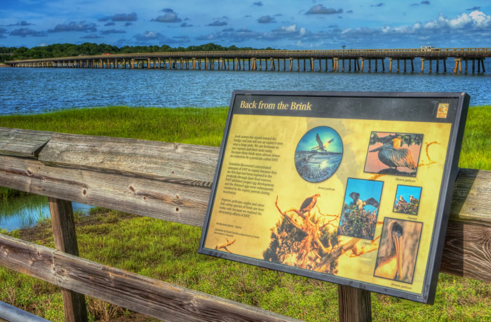 view-from-natures-center-fishing-pier-hunting-island-south-carolina