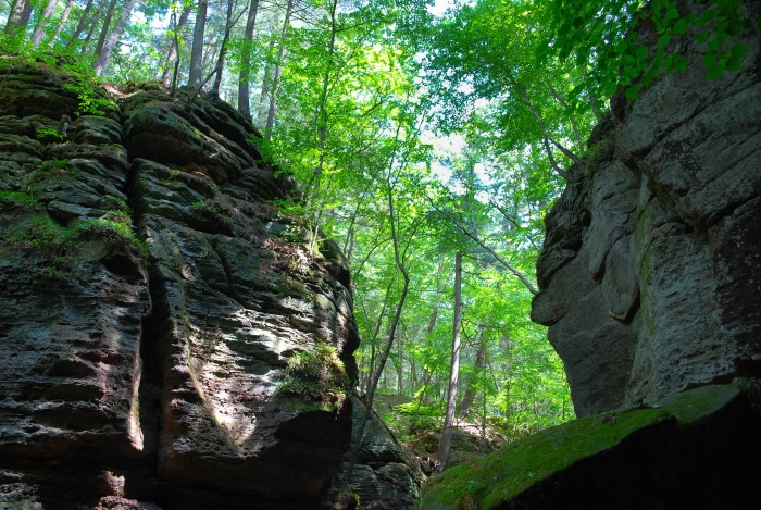7. The park contains 12 miles of the Ice Age Scenic Trail.
