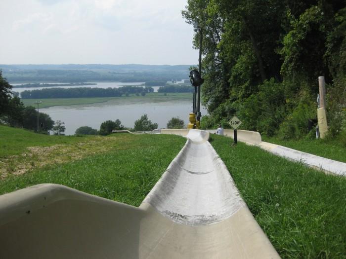 Alpine Slide Midpoint View