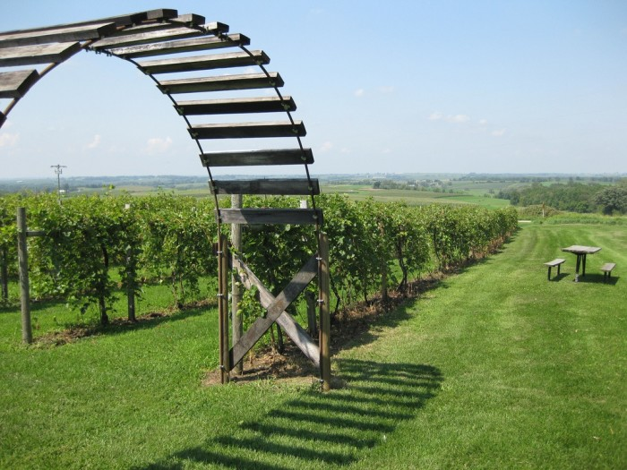 11. You might be spinning after all that, but a little wine at a local vineyard will set you right.