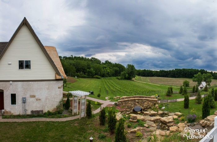 11. There are some amazing wineries here. Yes, Wisconsin wine!