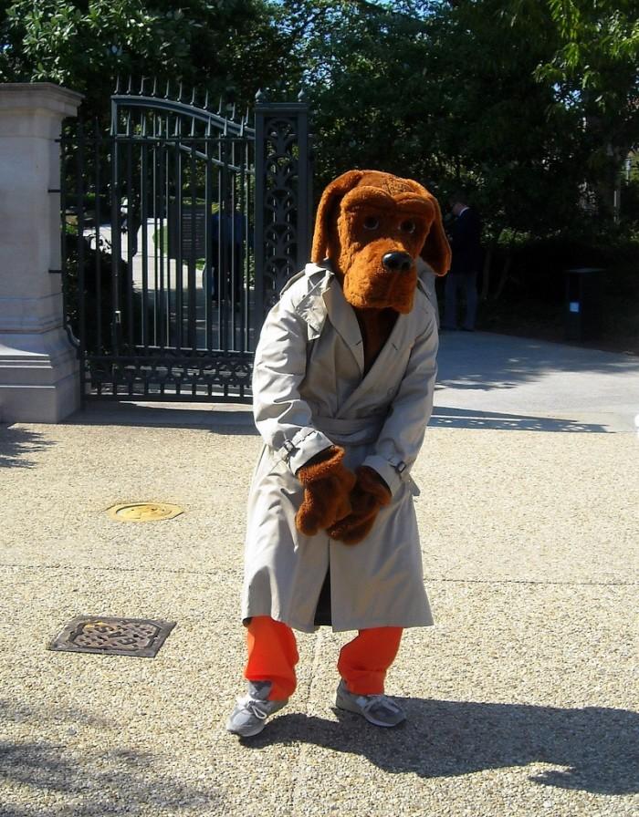 5. The Scruff McGruff Crime Dog