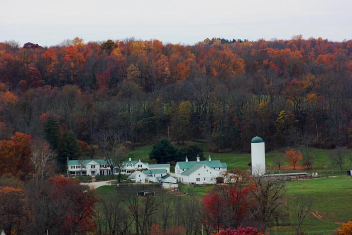6. Malibar Farm from Mt. Jeeze in Lucas, OH