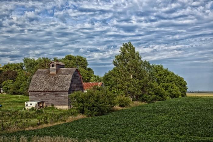 10.A pleasant rural farm scene.