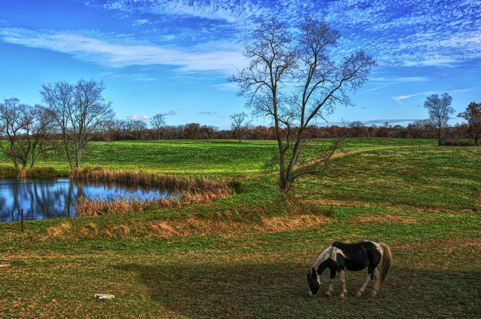 19. This Maryland landscape photo is quite magical.