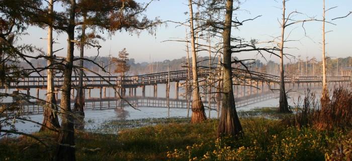 2. Black Bayou Lake NWF, Monroe