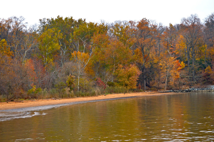 There is also a beach, which is a great spot for swimming, kayaking, or having a picnic. It's gorgeous in autumn...