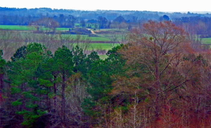 11. The Natchez Trace was an extremely important route during the War of 1812 since it was believed that British ships threatened the Gulf Coast.