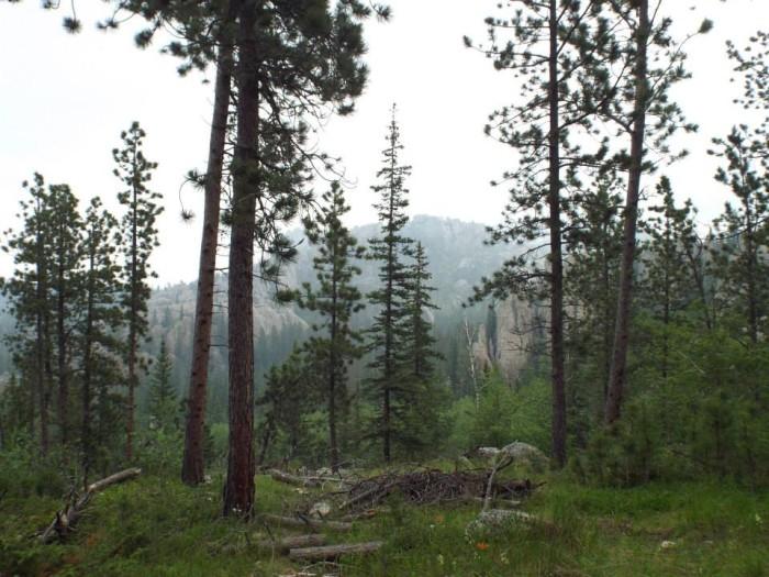 harney peak trail