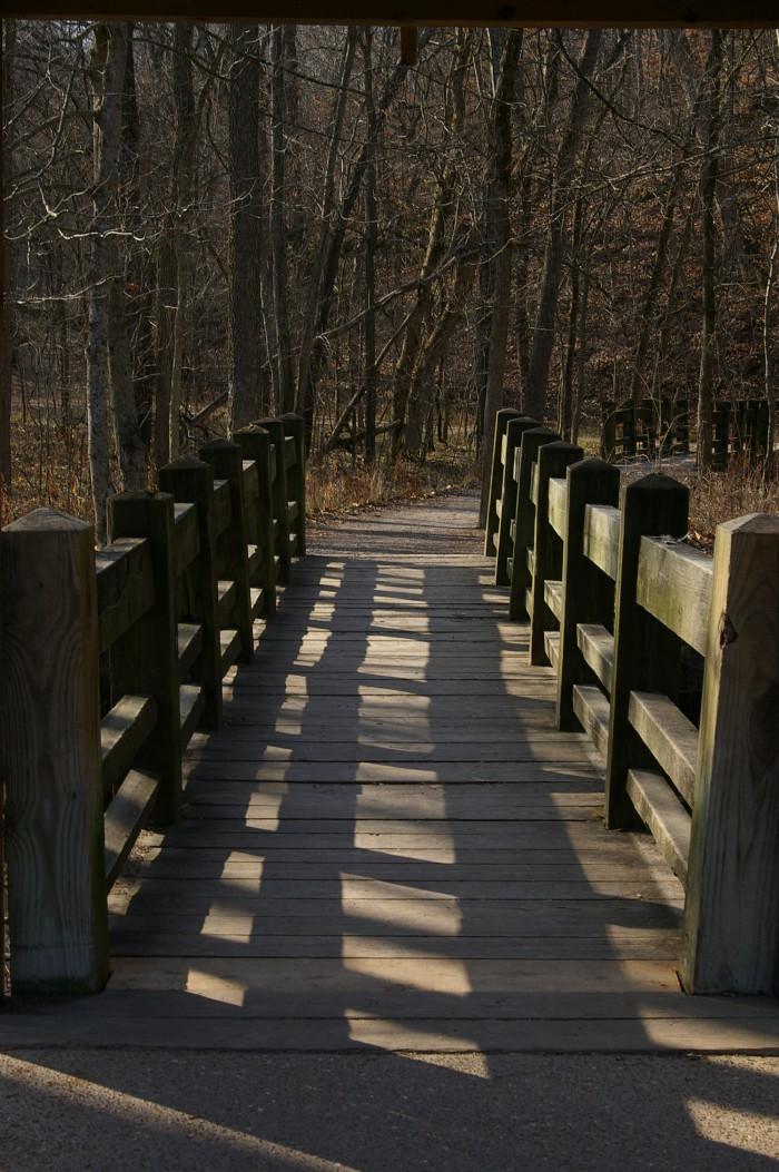 12. Devil's Icebox Trail