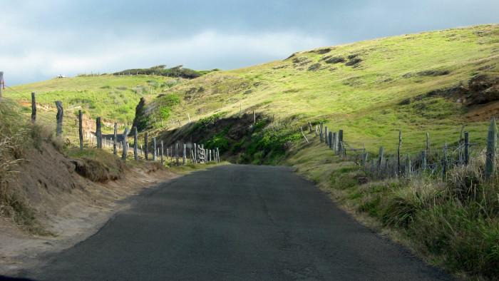 12. Maui's Kahekili Highway looks less like a major road, and more like a long country driveway.