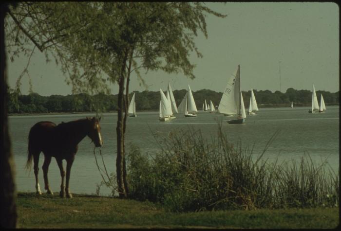 6. A peaceful day on White Rock Lake. (Dallas, 1972)