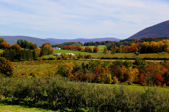 12. The rolling hills of the Berkshires are as pretty as a postcard.