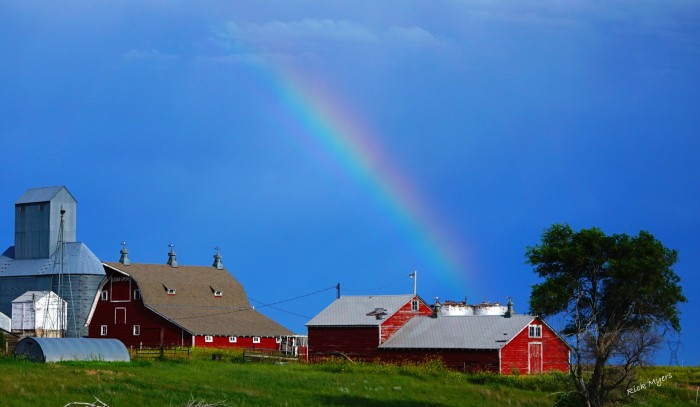 8. A rainbow streaks across the sky to touch this rural skyline in western Nebraska.