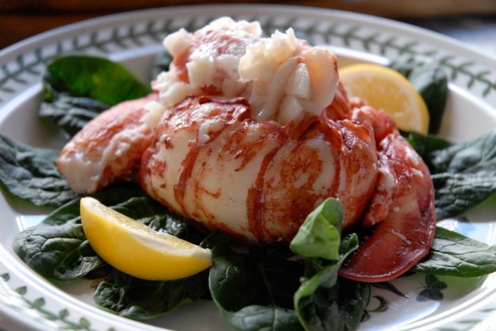 Bay Leaf Cafe - Spearfish, SD