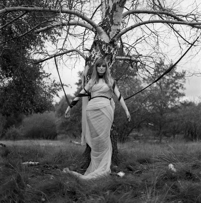 5. Witch's Tree