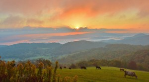 12 More Photos That Prove Rural North Carolina Is The Best Place To Live
