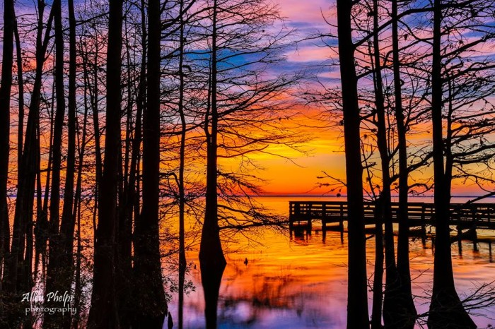 8. Just before the sunrise at Lake Phelps by Allen Phelps .