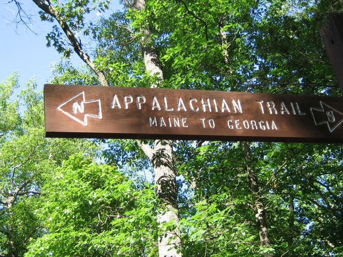 6. The endless amount of hiking trails