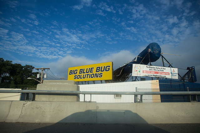 10. They have a big blue bug on the side of the highway that is dressed up for special occasions.