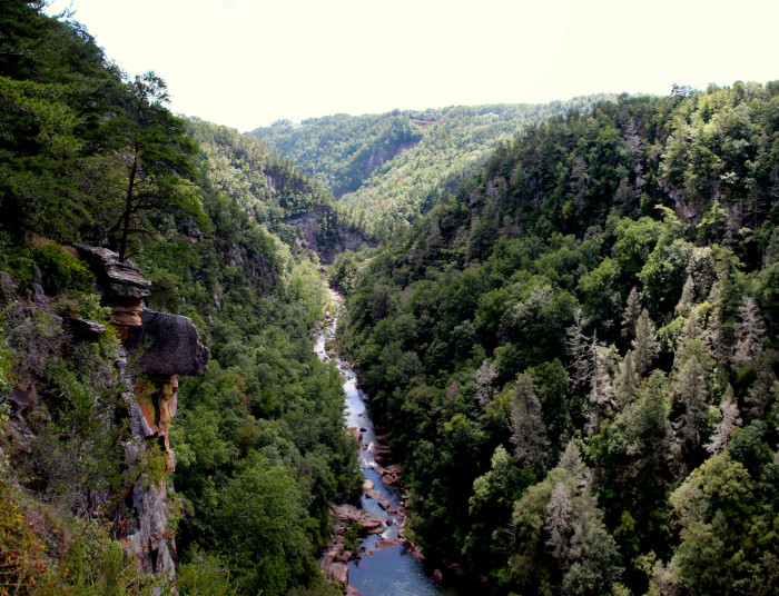 4. An overhead view of the Tallulah River in all her glory: