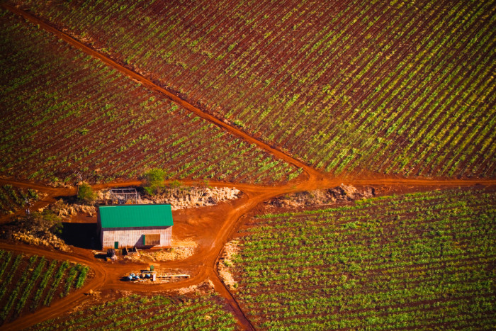 15. Country roads in Hawaii, as photographed from a helicopter.