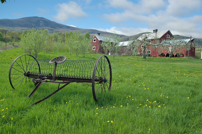6. Spring in the Berkshires is almost too gorgeous to handle. Almost.