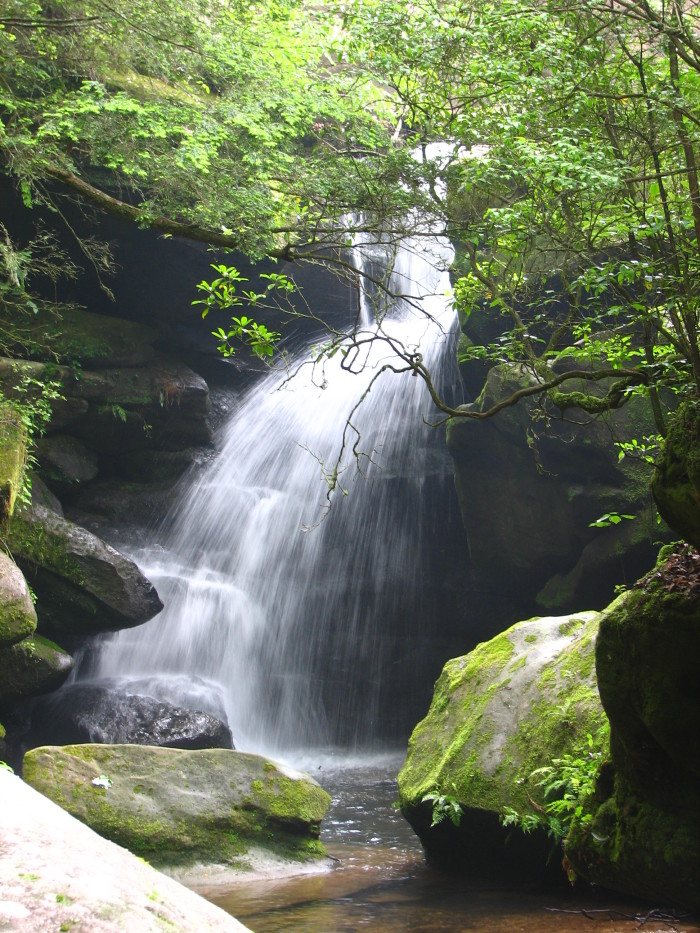 10. Rainbow Falls at Dismals Canyon