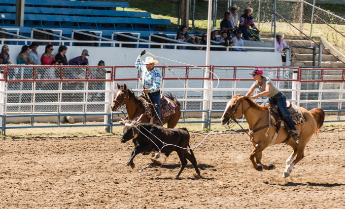 12. Check out the World's Oldest Rodeo in Prescott.