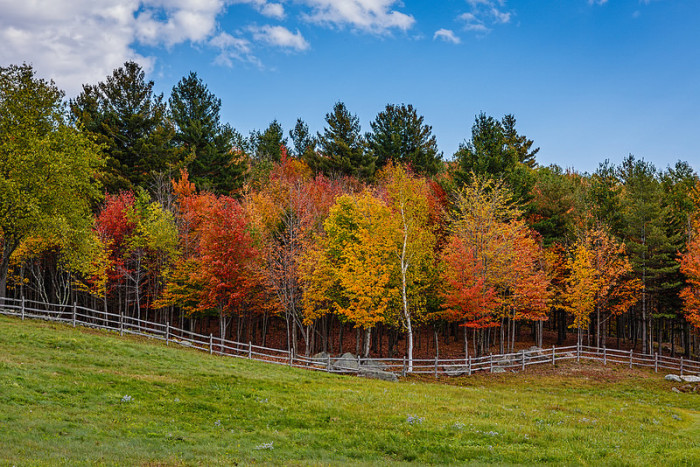 16.  Fall Foliage in the country is not to be missed.