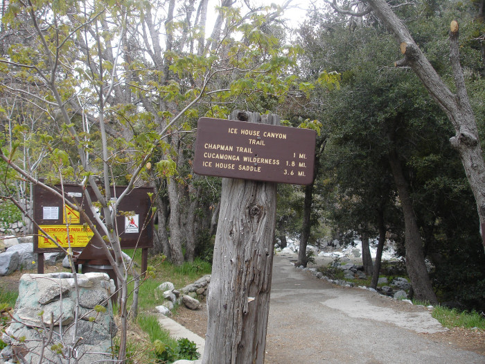 4. Ice House Canyon Trail