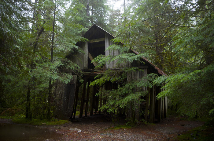 9. An abandoned house in the Opal Creek Forest: