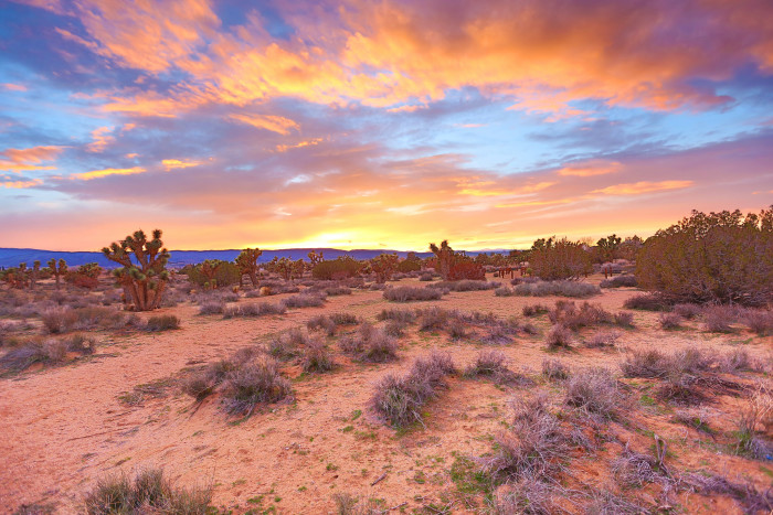 2.  Magic hour in the Mojave Desert as the sun goes down.