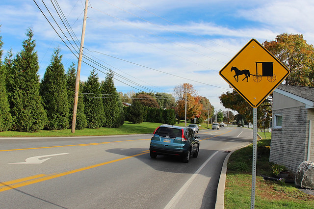 10. If you're stuck in traffic, there's a solid chance it's thanks to a slow-moving Amish buggy.