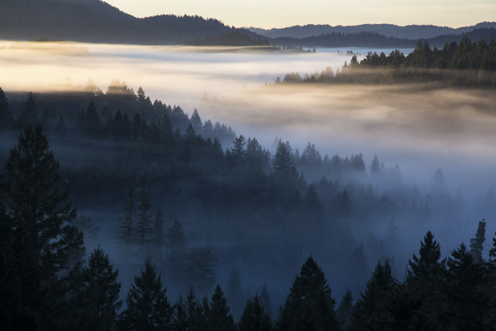 1. The mist rolling over the Elkhorn Mountain Wilderness.