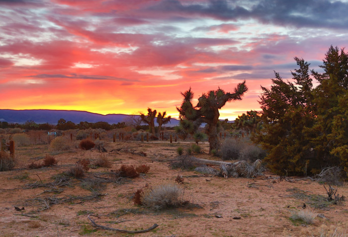 12.  A desert sunset lights up the sky in Antelope Valley with soft bursts of orange and red.