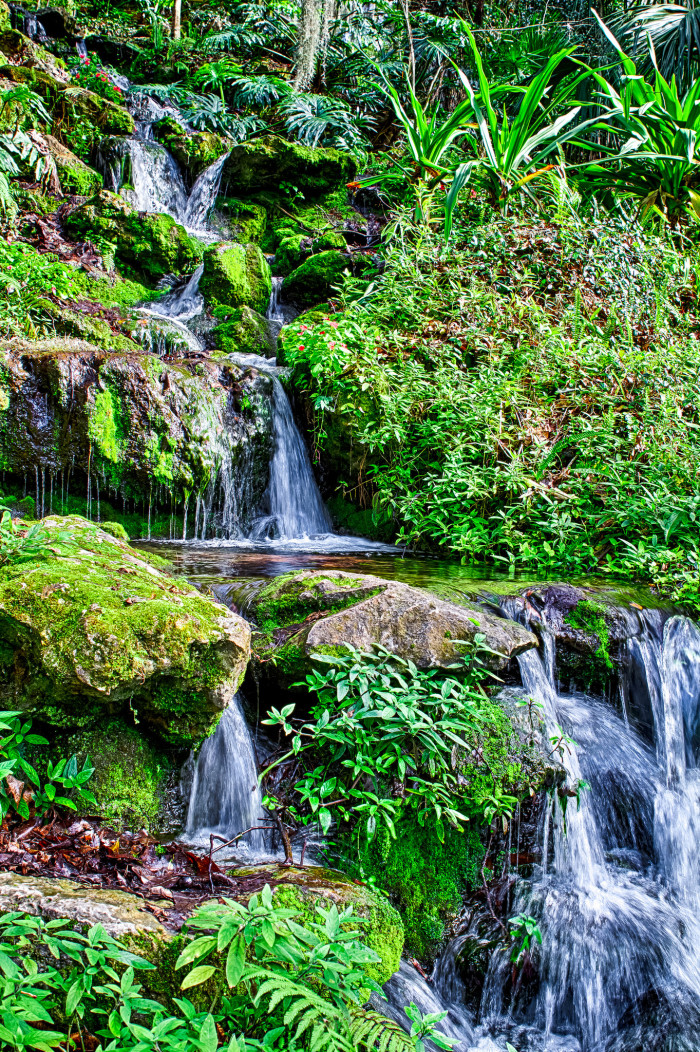 11. Rainbow Springs State Park, Dunellon