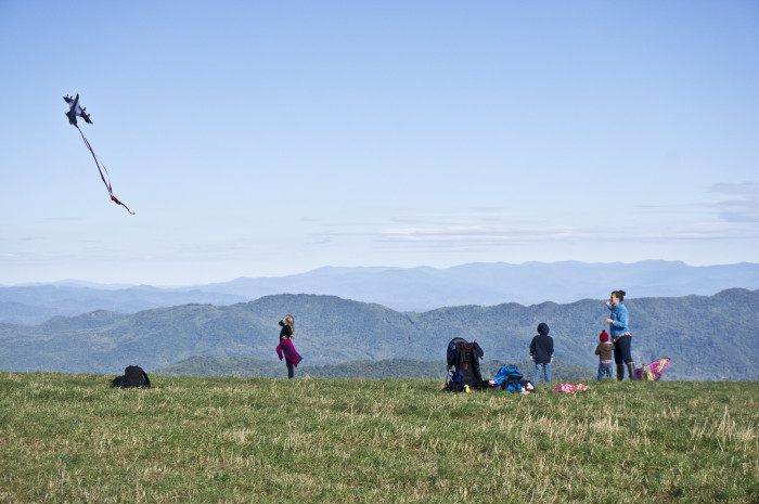 3. Max Patch