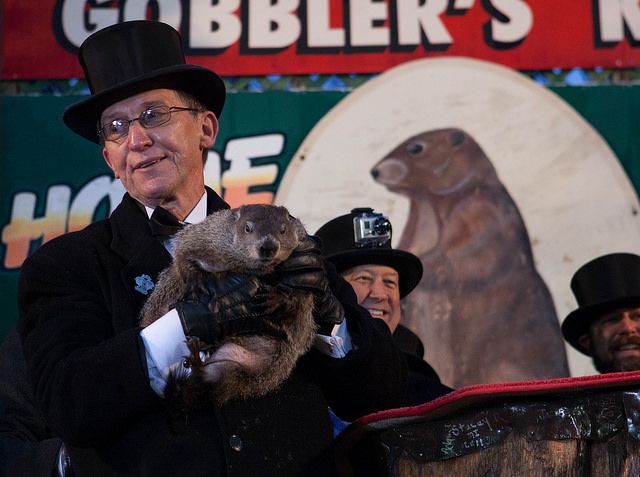 10. Though Groundhog Day originated in Punxsutawney, and Phil is the most famous groundhog, various cities throughout the U.S. and Canada have their own beloved groundhogs for the event.
