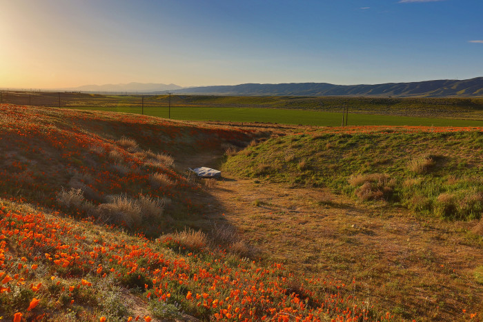 2. Sunrise in Antelope Valley looks like a peaceful spot to wake up in the morning.