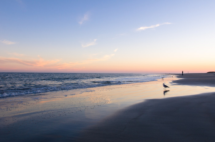 The serenity that you feel sitting on the beaches of Tybee Island is unparalleled.