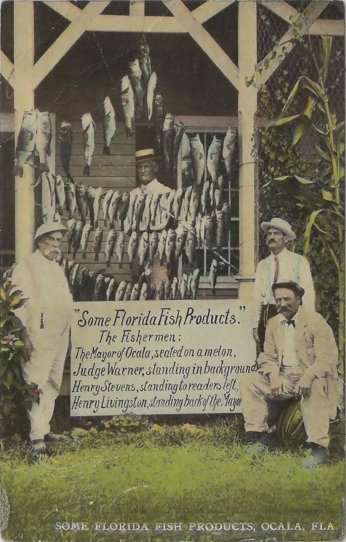 "15. ""Some Florida Fish Products, Ocala, Florida"""