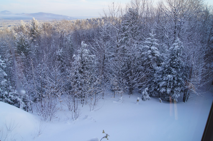 18. New Hampshire, frosted.