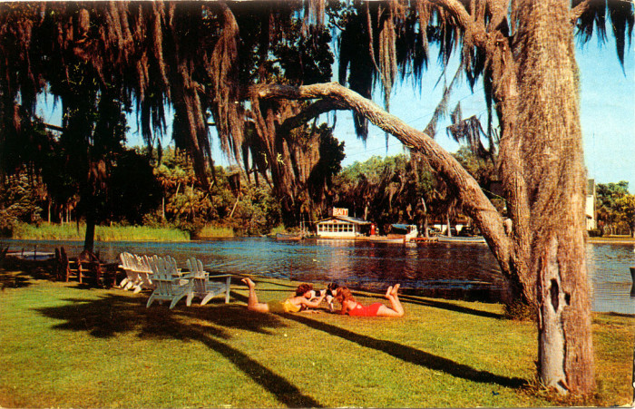 "22. ""Postcard of Girls and Dog, Homosassa Riverfront"""