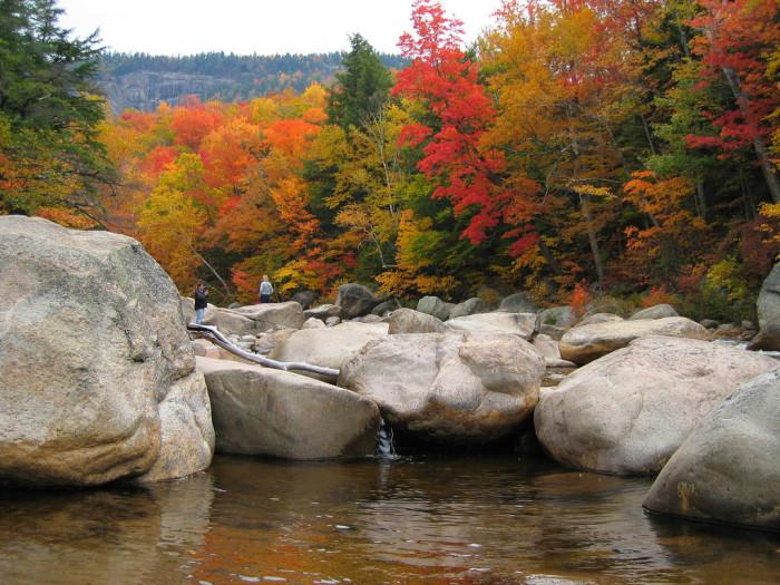 2. The autumn colors.