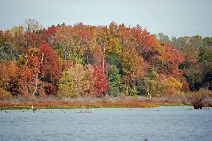 6. Tuckahoe Lake, Caroline County