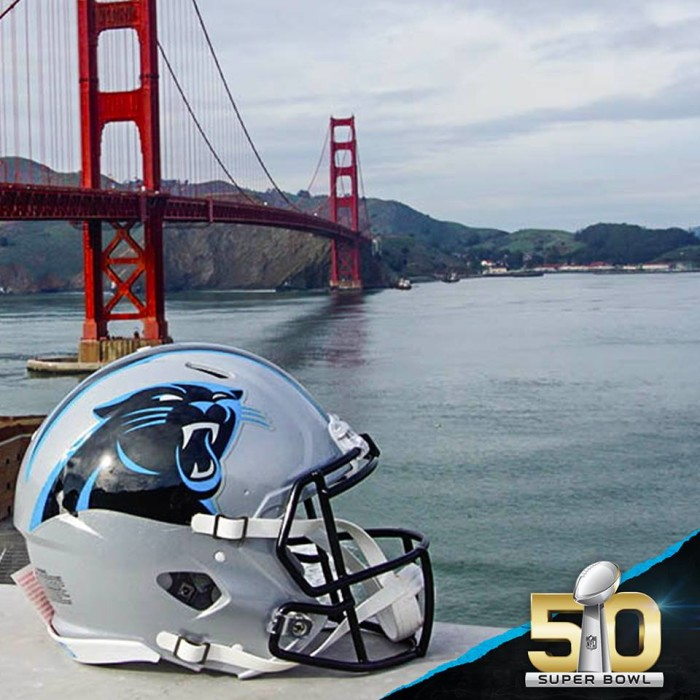 10. Honestly, why would you not? Welcome to Panther Nation, baby. KEEP POUNDING!