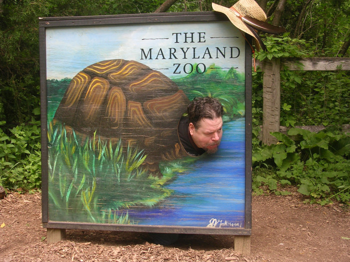 6) This odd species of turtle was captured at The Maryland Zoo.
