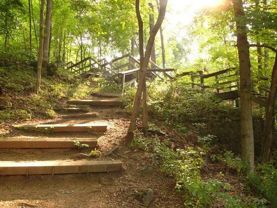 1Xa-nearby-hiking-trail